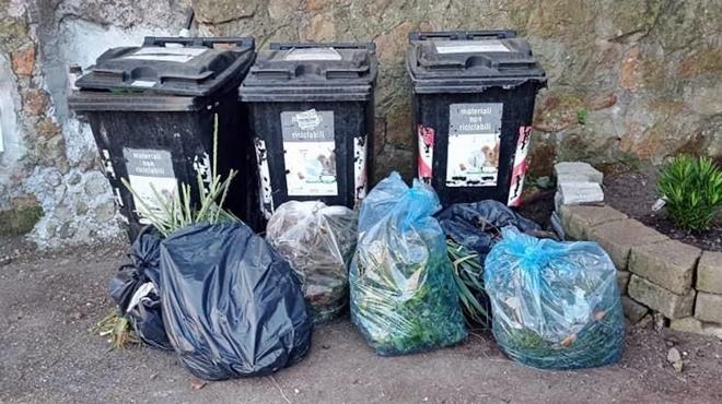 rifiuti ix municipio